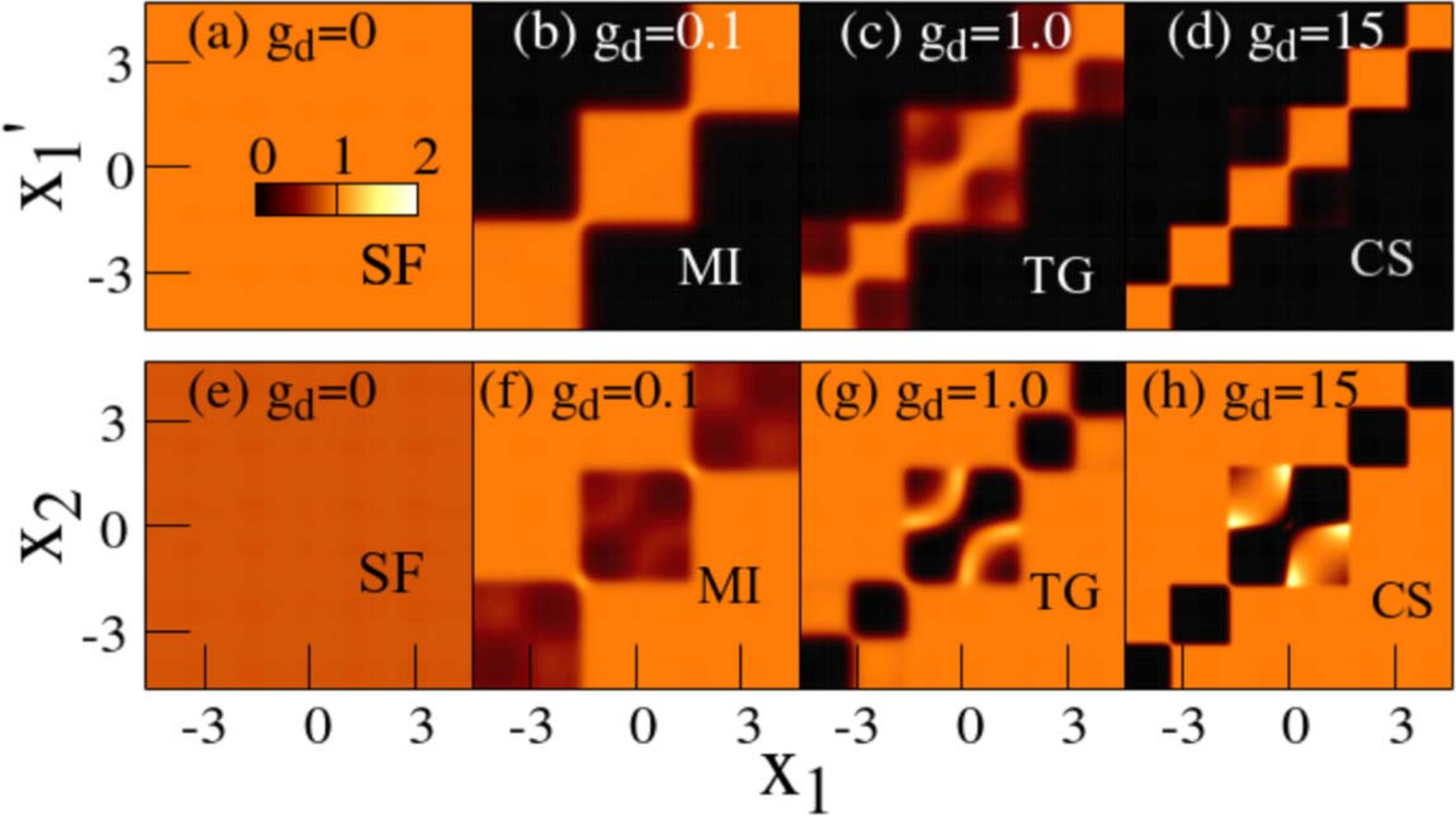 Correlations of strongly interacting ultracold dipolar bosons in optical lattices